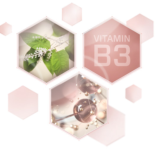 "Three hexagons show images of a leafy green plant, round molecule-like structures and the words ""Vitamin B3"" to represent encapsulated resveratrol, an age-defying peptide and Vitamin B3, which are the three key ingredients in Mary Kay's new TimeWise Miracle Set 3D skin care regimen."